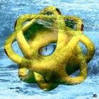 Cyclopoctopode